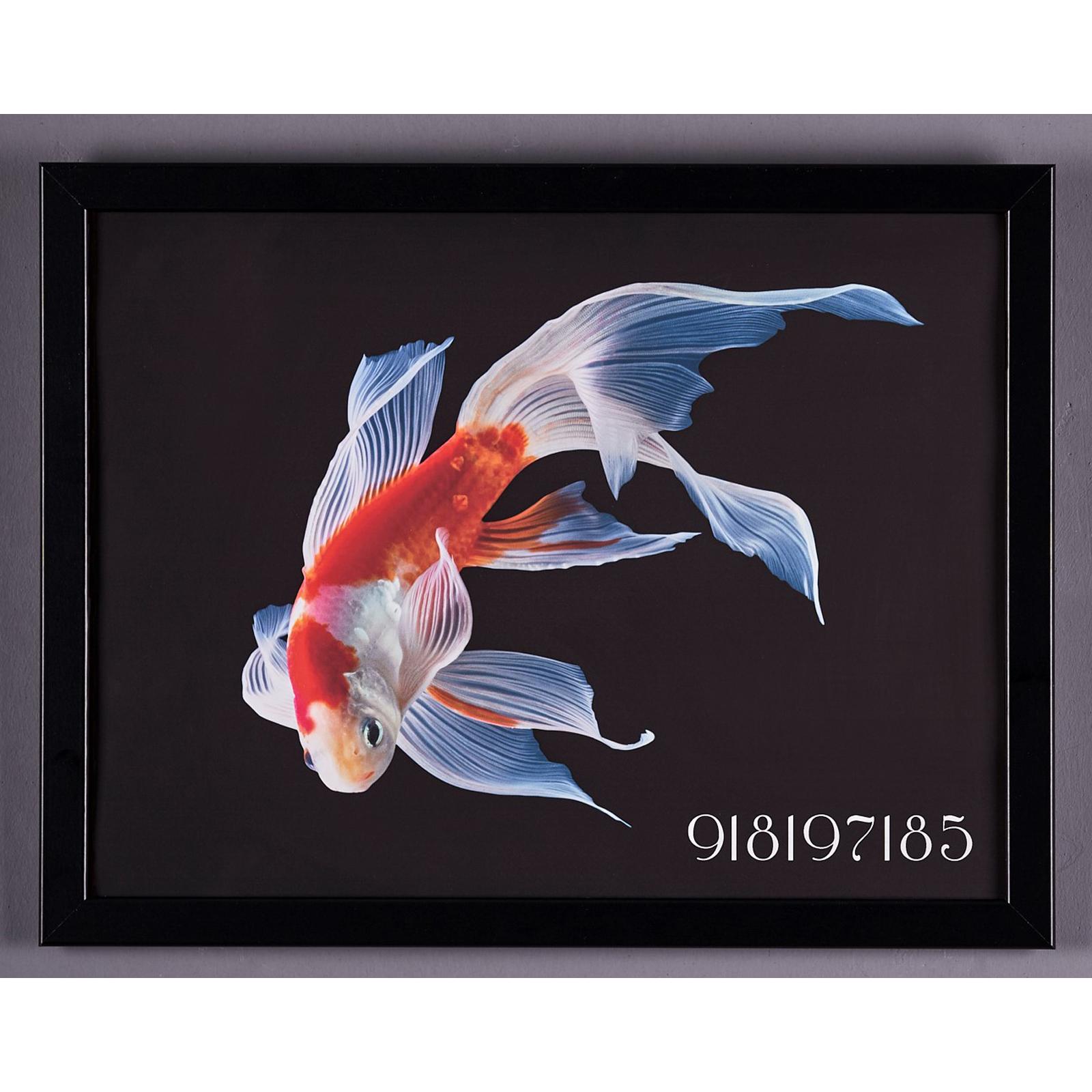Karaca Home Japon Balığı Umut Sekansı Tablo 33x43cm